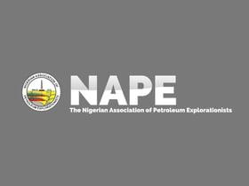 NAPE Lagos 2019